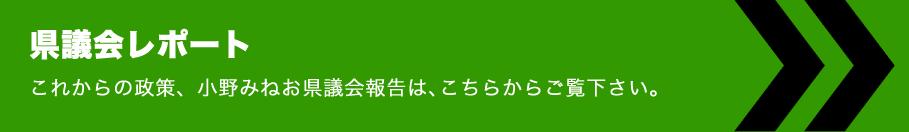 新潟県議会報告
