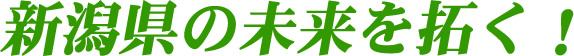 新潟県の未来を拓く!